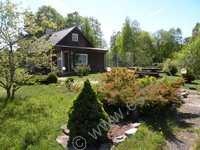 Holiday Cottage Saaremaa  Mässa